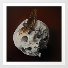 Acherontia  Art Print