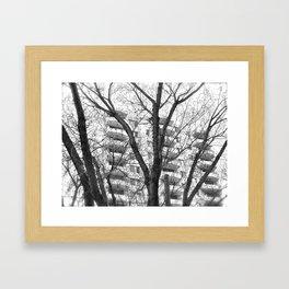 Nature Ovecomes Framed Art Print