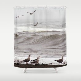 Seagulls and the Surf Shower Curtain