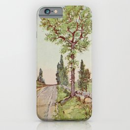 Vintage Print - Familiar Trees and Leaves (1911) - Sour Gum or Tupelo iPhone Case