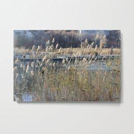 Bluffer's Pond Metal Print