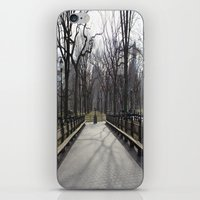 central park iPhone & iPod Skins featuring Central Park by Joanna Dickinson