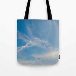 Hummingbird Cloud by Teresa Thompson Tote Bag