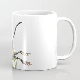 Beetles #2 (Sagra Femorata) Coffee Mug