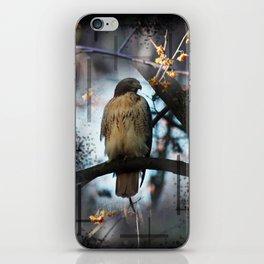 A Hawks Dream iPhone Skin