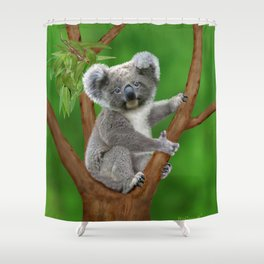Blue-eyed Baby Koala Bear Shower Curtain