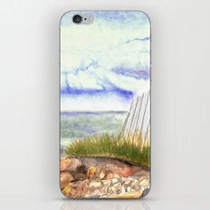 little shore iPhone & iPod Skin