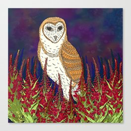 Barn Owl and Fireweed Canvas Print