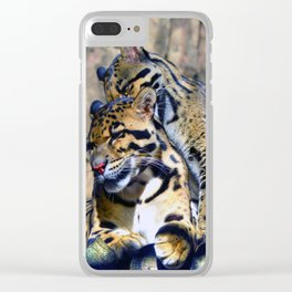 Clouded Leopards Grooming Clear iPhone Case
