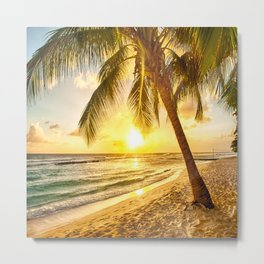 Beach - Palm Trees - Ocean - Shore - Sand - Nature - Sun Metal Print