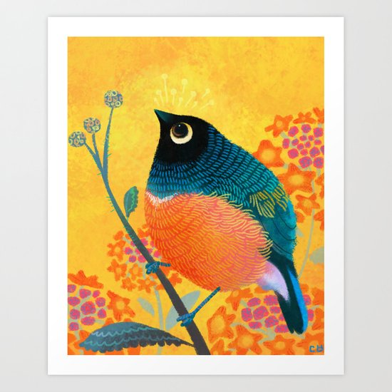 Superb Starling Art Print