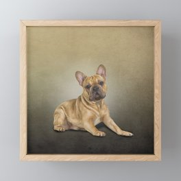 Drawing dog French Bulldog Framed Mini Art Print