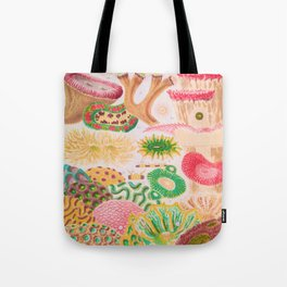 Colorful Coral Vintage Sea Life Illustration Tote Bag