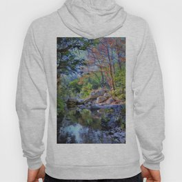Lost Maples State Park Hoody