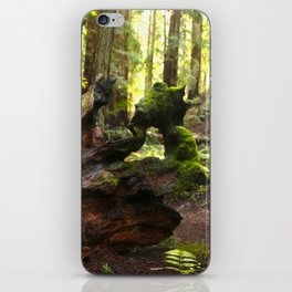 Redwood patterns iPhone Skin
