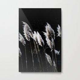 Grass 4 Metal Print