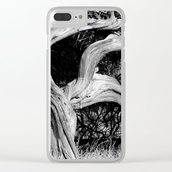 Crooked Clear iPhone Case