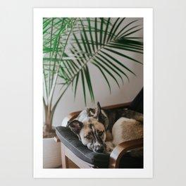 Dog by Jake Noren Art Print