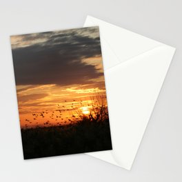 sunset and birds Stationery Cards