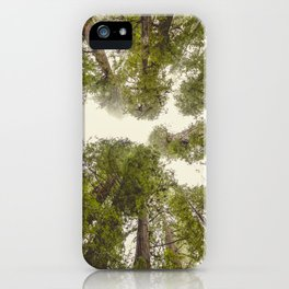 Into the Mist - Nature Photography iPhone Case
