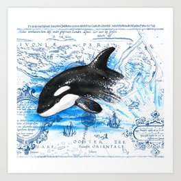 Breaching Baby Orca Watercolor Blue vintage Map Art Print