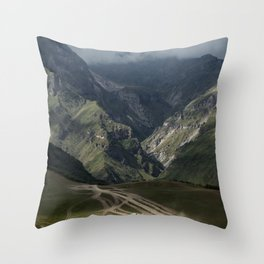 Diary of a Stalker Throw Pillow
