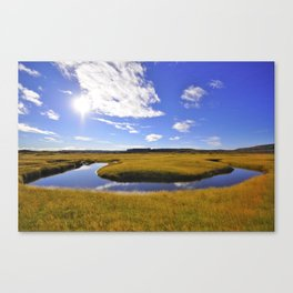 A bend in the river. Canvas Print