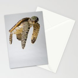 Honu Stationery Cards