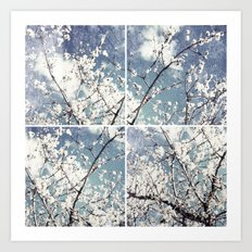 almond mediterranean tree flowers collage Art Print