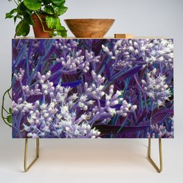 Bunches of Tiny Flowers Credenza