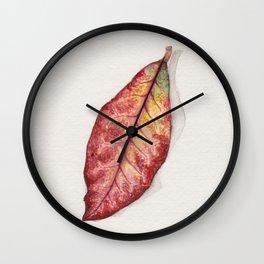 Petra Croton Wall Clock