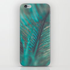 Turquoise Feather Close Up iPhone & iPod Skin