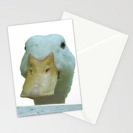 Peeking Duck Vector Stationery Cards