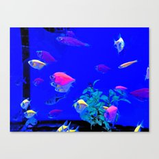 I wanna be your fish Canvas Print