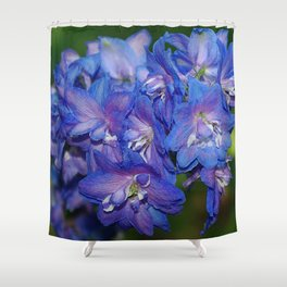 Sky blue Delphinium Flowers Shower Curtain