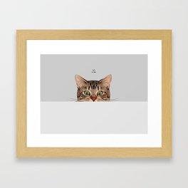 Cat on Gray Framed Art Print