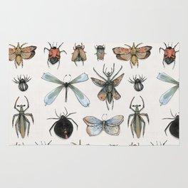 Entomology Rug