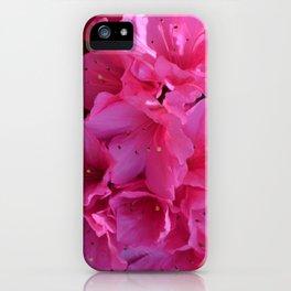 Azalea I iPhone Case