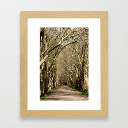Spring Tunnel Framed Art Print