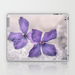 Zen Soft Pastel Purple Clematis Blossom Laptop & iPad Skin