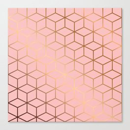 Pink and Gold Geometry 011 Canvas Print