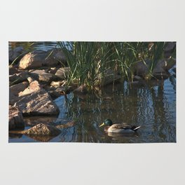 The Duck Between The Reeds And Rocks Rug