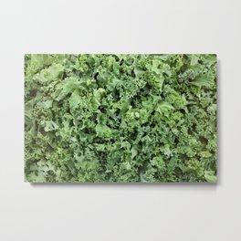 Shredded kale Metal Print