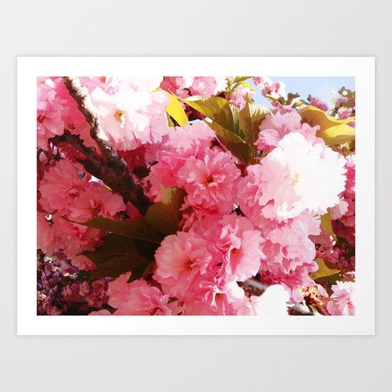 Pink Sorbet Art Print