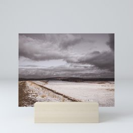 Floodplain II Mini Art Print