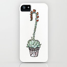 Blooming Echeveria iPhone Case