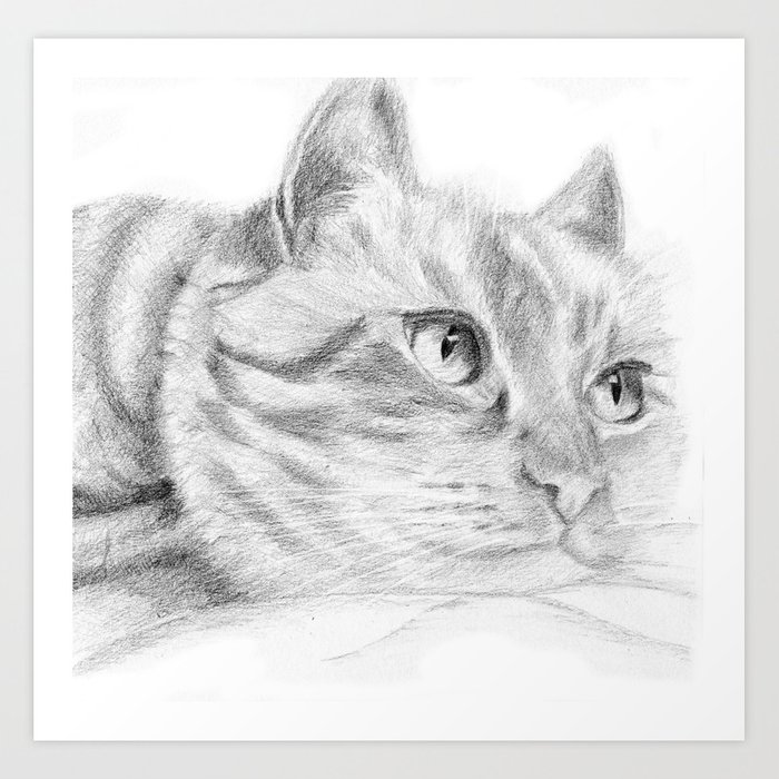 Cat sketch Art Print