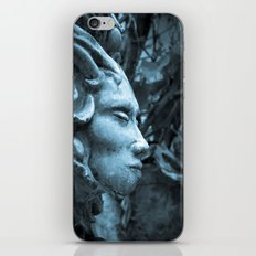 The Stone Forest  iPhone & iPod Skin