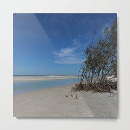 Beach Mangroves  Metal Print
