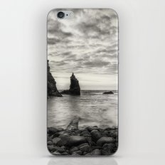 Port Coon iPhone Skin